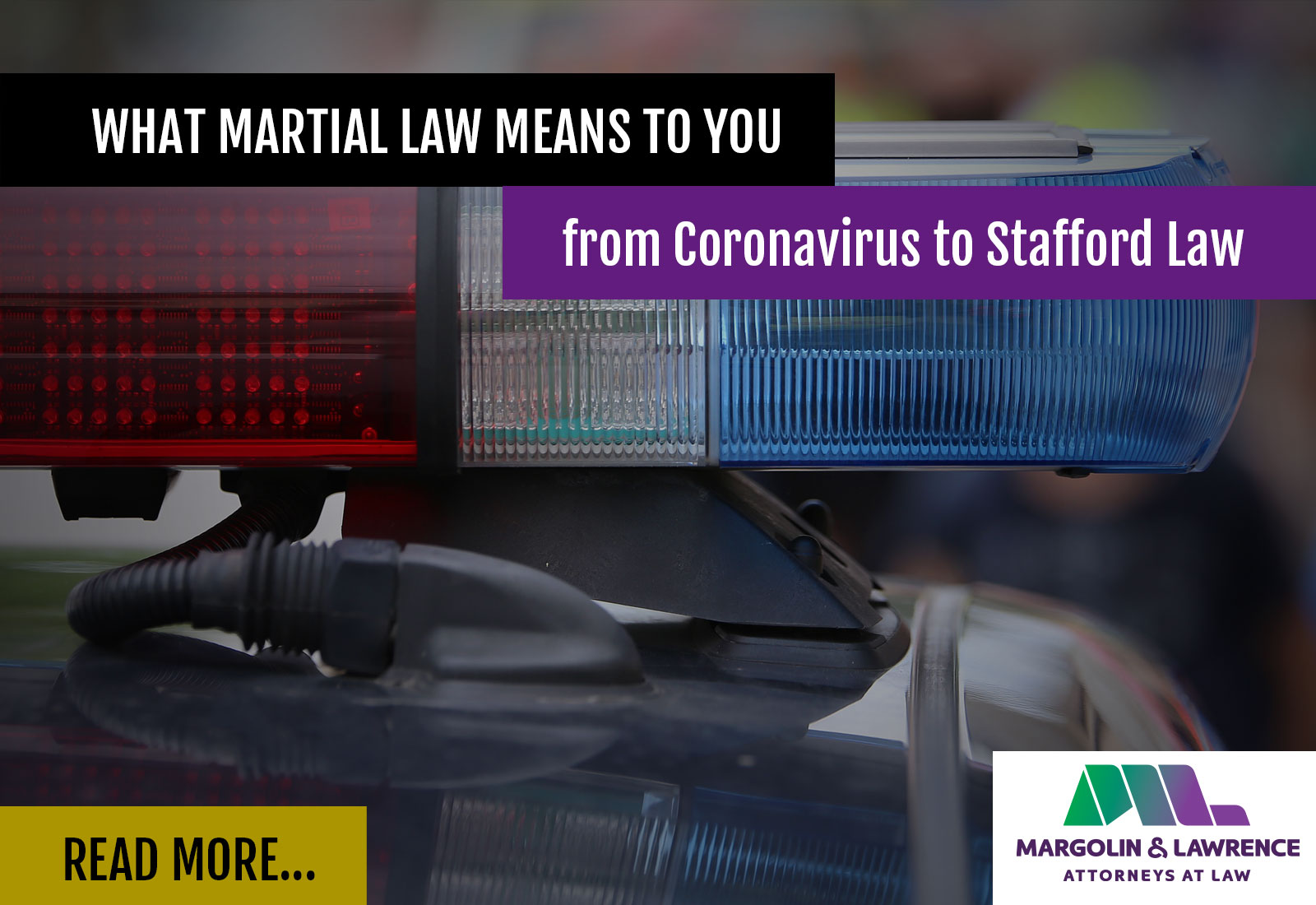 martial law by margolin & Lawrence
