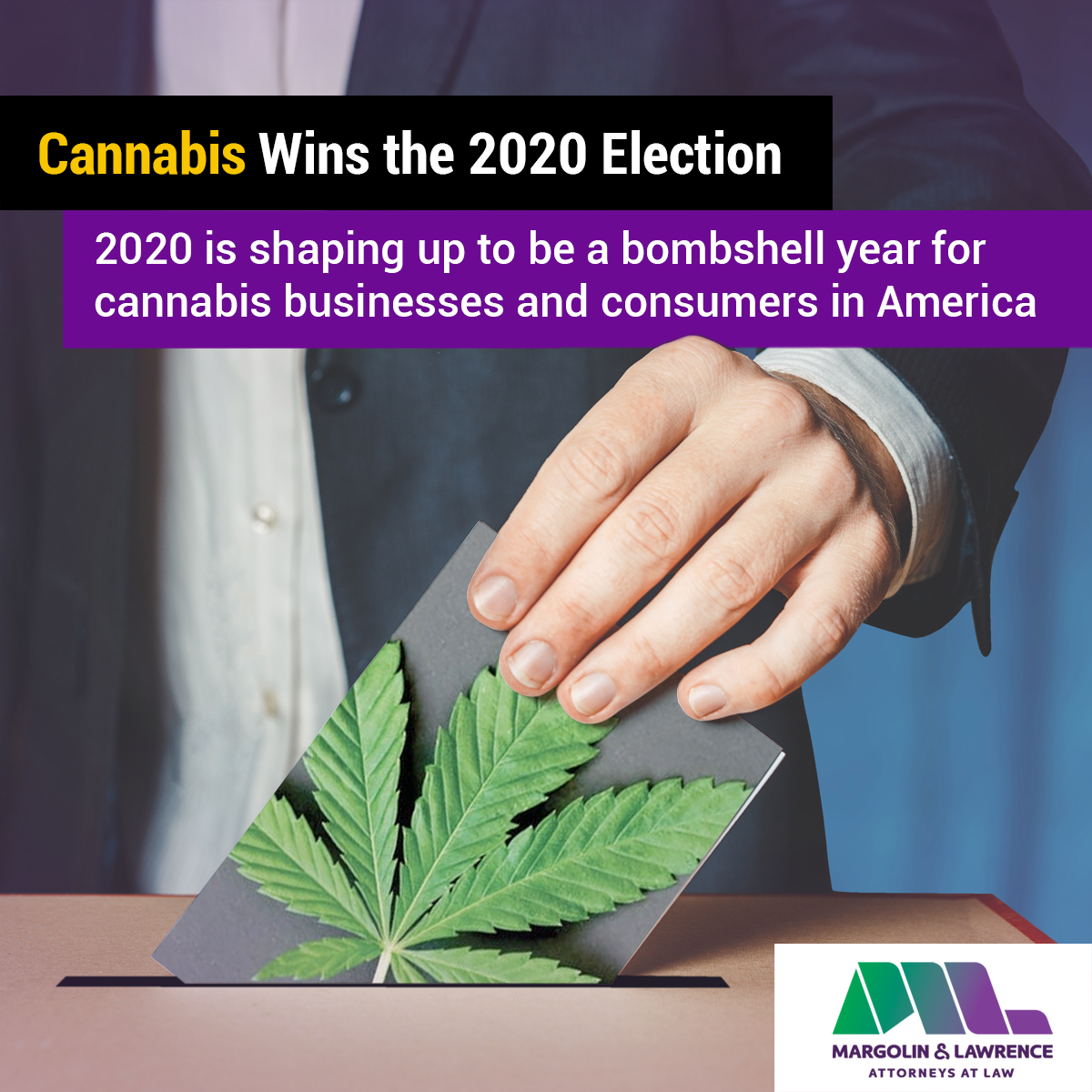 Cannabis wins the 2020 election