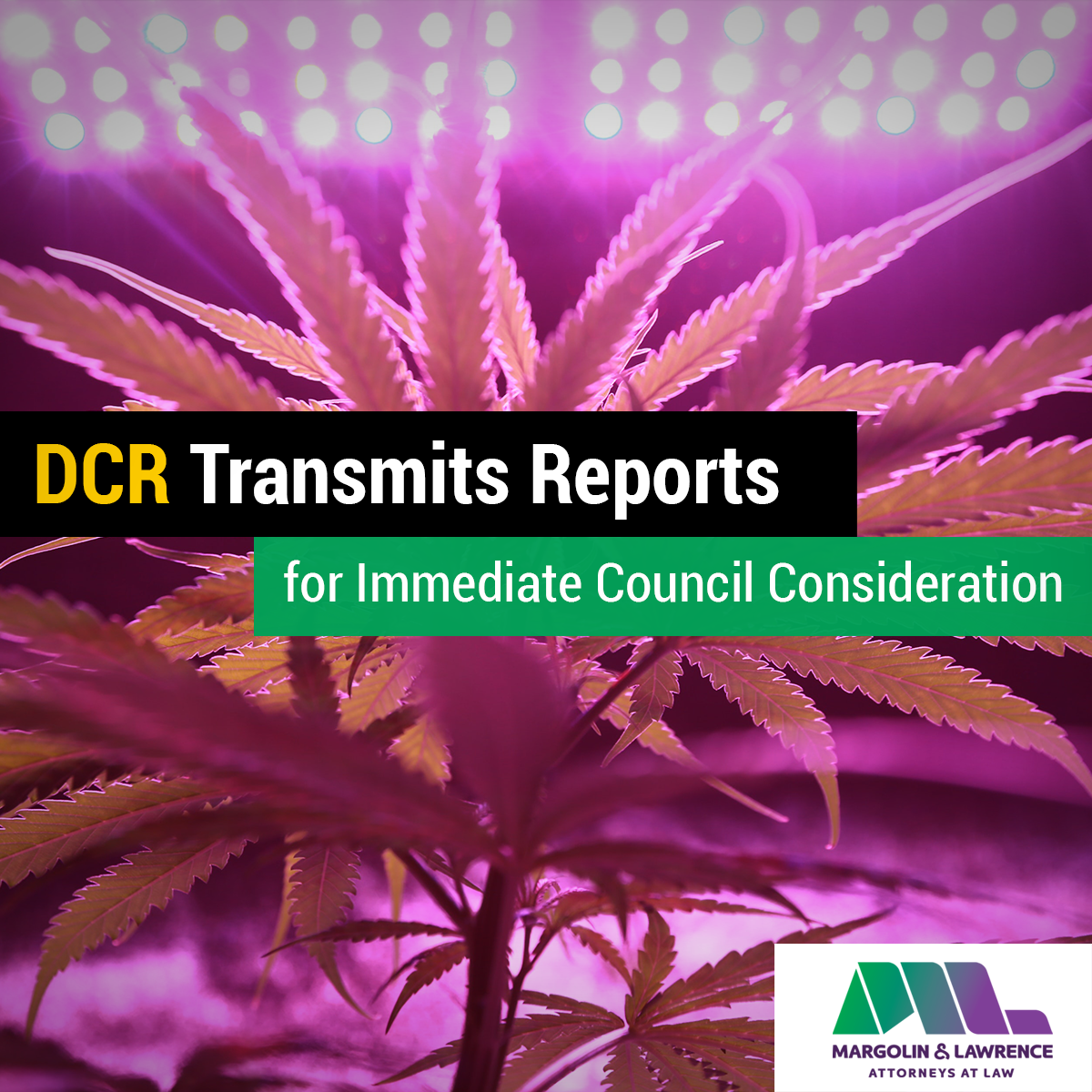 post_DCR-reports